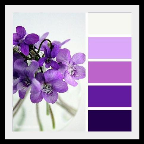 IvCr44wJdTw Фиолетовое настроение.